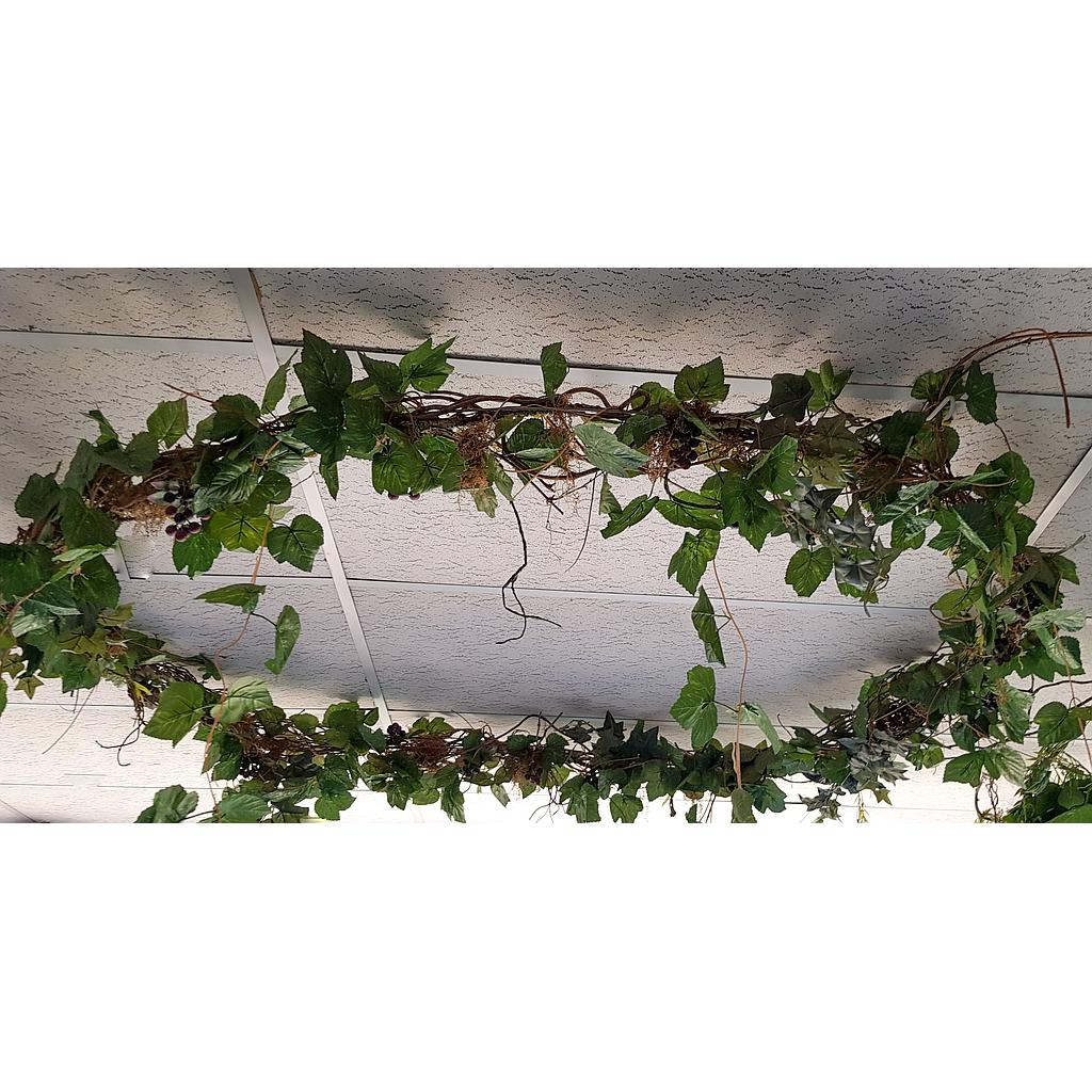 Plant ivy Ring for Roof Setting